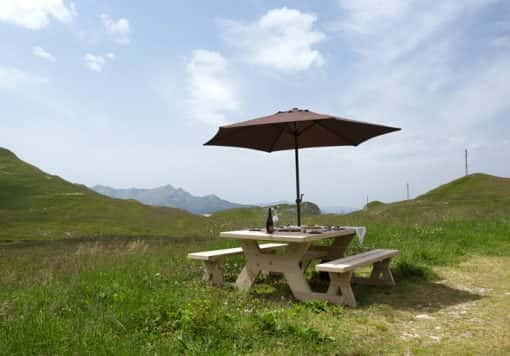 table bancs bois mélèze extérieur