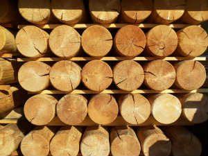 rondin bois mélèze