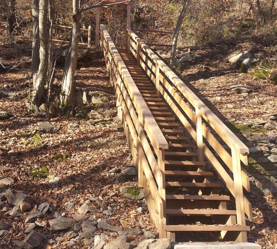 escalier stopper foret sport